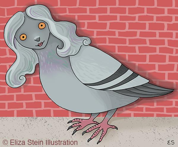 Pigeon Harpy Illustration